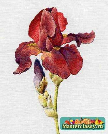 Вышивка гладью рисунки цветов.
