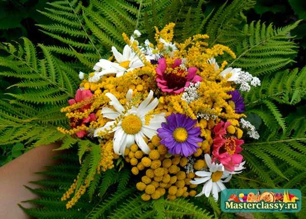 Очарование полевых цветов