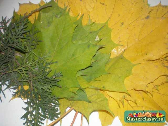 Но когда холодает, мы... листья клена - листья тополя - веточка кипариса - нитка.  Что же нам понадобится?