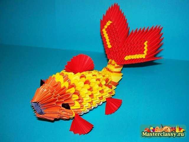 модульной рыбки сверху,