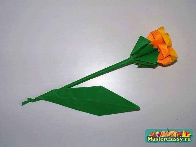 Впрочем, данный цветок не сильно нуждается в стебле или листе.  Его бутон красиво смотрится сам по себе (вид сверху) .