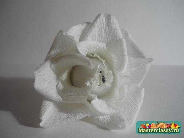 роза из бумаги мастер класс