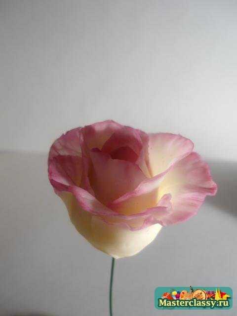 Мастер класс. Роза из холодного фарфора