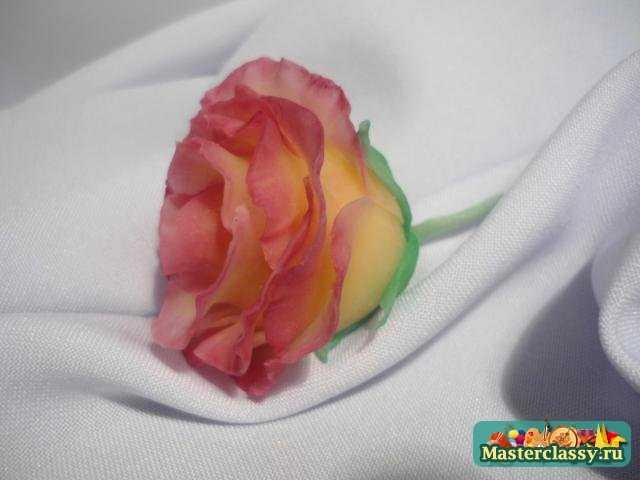 Роза из холодного фарфора мастер класс