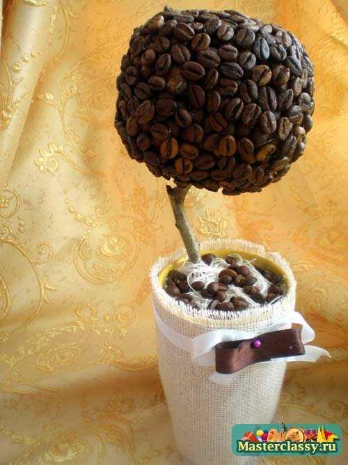 Кофейное дерево сделано своими руками фото 114