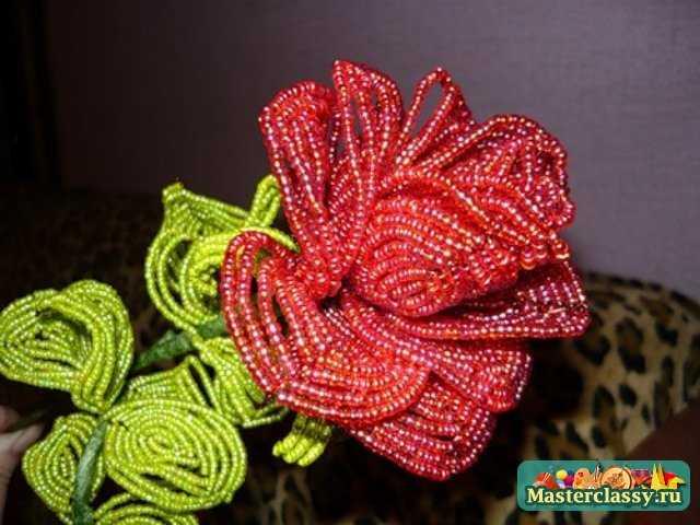 тюльпаны из бисера схемы плетения.