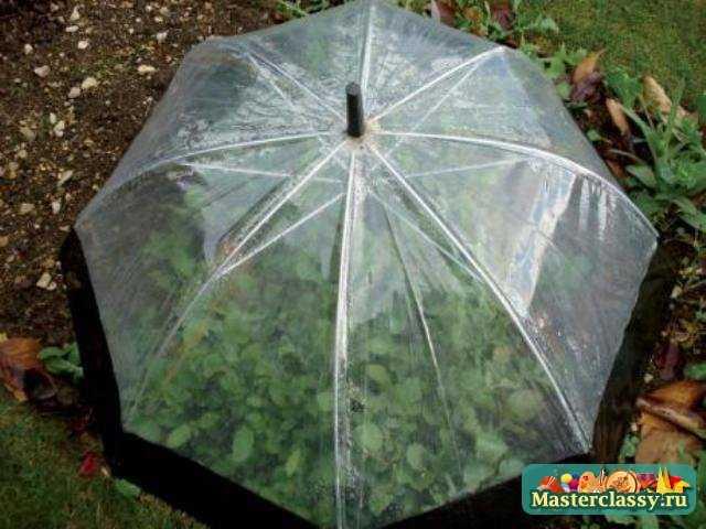 15 удивительных идей для использования старых зонтов.  Подари им новую жизнь.  Фото!