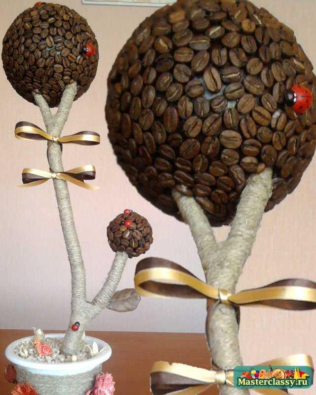 Кофейное дерево своими руками мастер