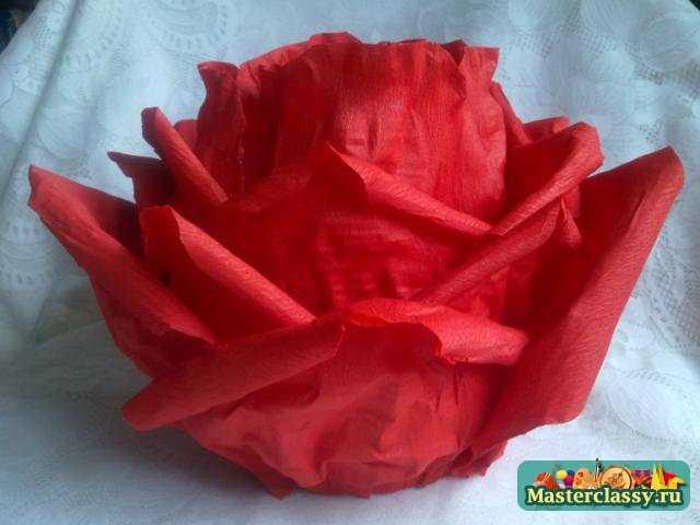 Костюмы своими руками роз