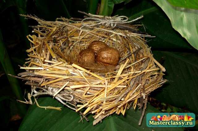 Как сделать птичьего гнезда 123