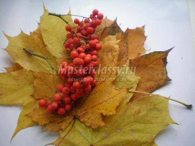 Поделки из листьев и рябины