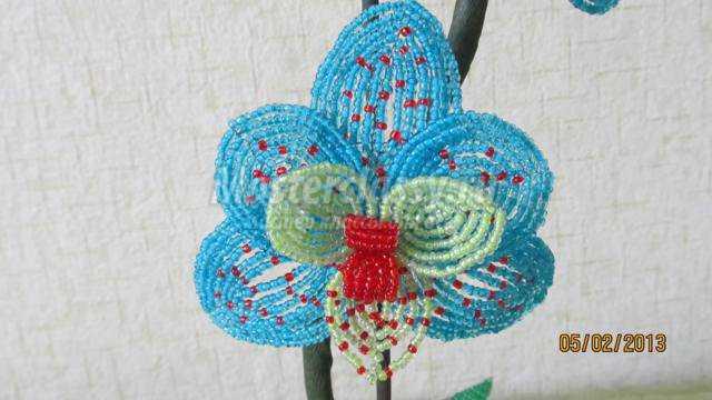 бисероплетение орхидея. Мечта