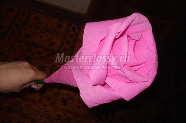 Большая роза из бумаги мастер класс с пошаговым фото