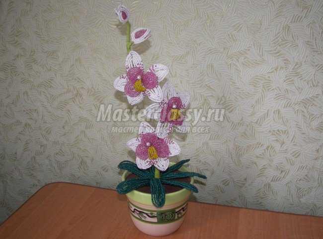 Орхидея из бисера - Делаем фенечки своими руками.