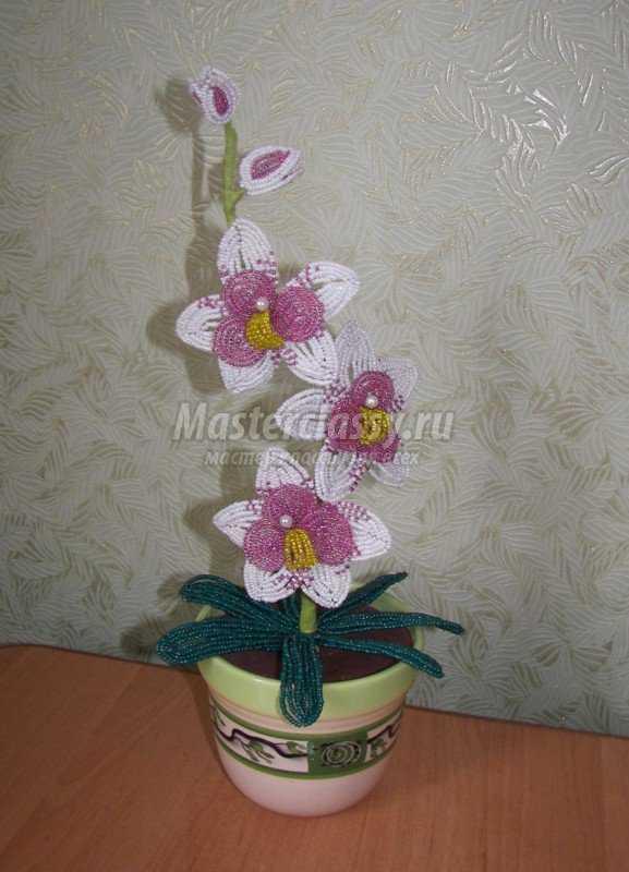 Бел Розовая Орхидея Из Бисера Мастер Класс.