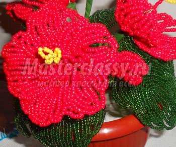 цветы из бисера.  Красный гибискус.