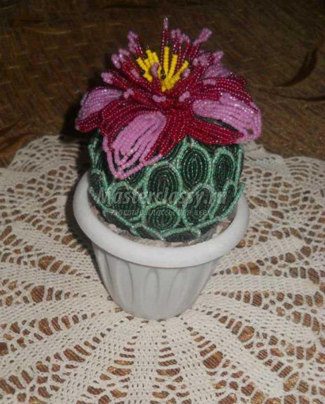 цветущий кактус из бисера.