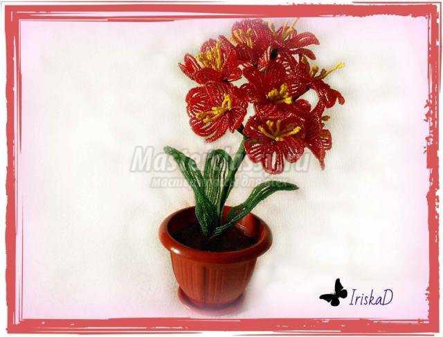 Цветы из бисера кливия мастер класс с