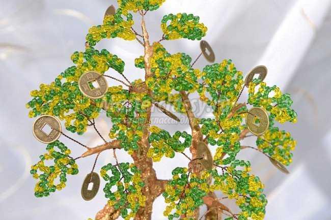 Денежное дерево мастер класс с