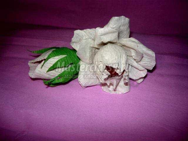 Цветы розы своими руками фото фото 268
