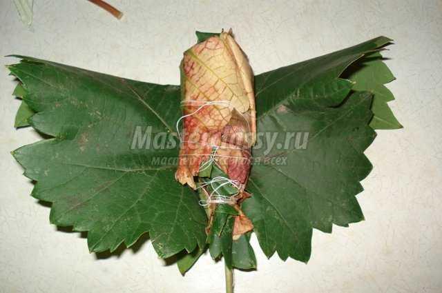 Блюда из листьев ревеняы с фото