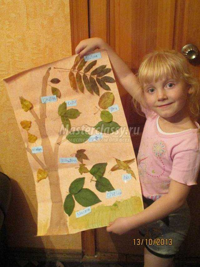 Гербарии своими руками для детского сада