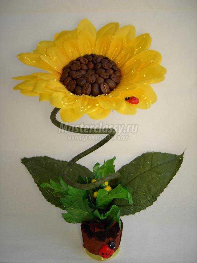 Цветы из кофе своими руками