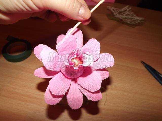 Цветы из гофрированной бумаги и