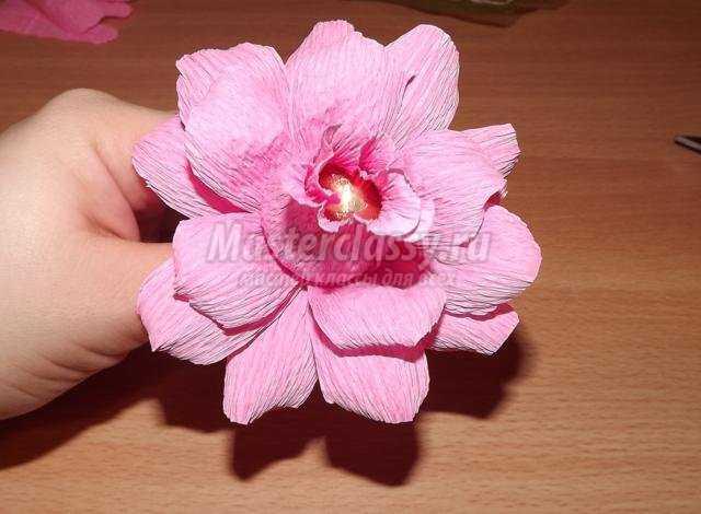 цветы из конфет и гофрированной бумаги своими руками