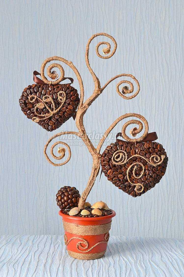 Кофейные деревья пошаговое
