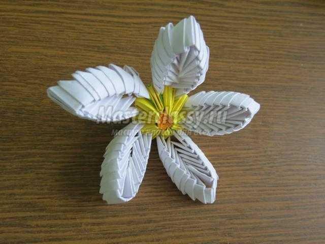Для листиков ромашки