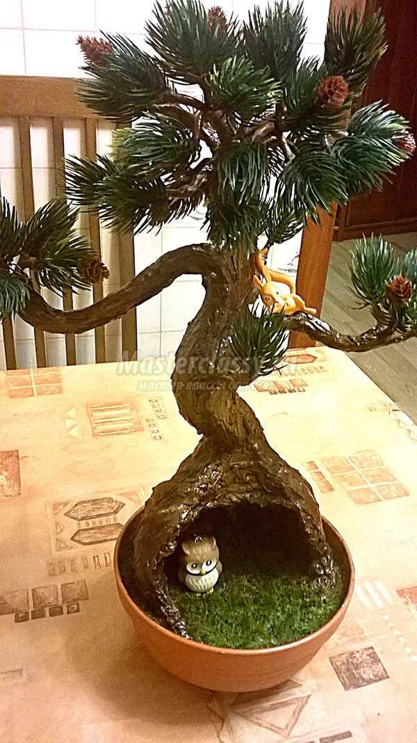 дерево бонсай мастер класс с пошаговым фото