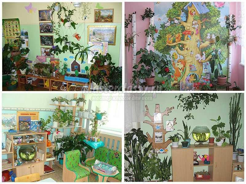 уголок природы в детском саду своими руками