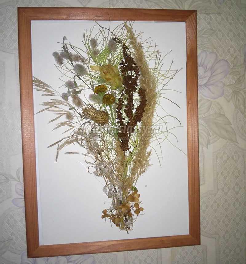 Картина из природных материалов своими руками фото 5