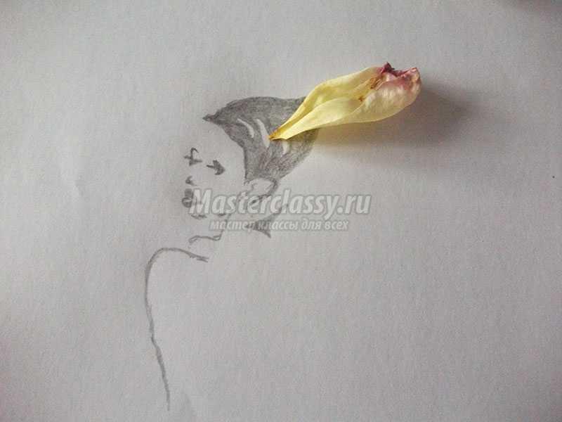 картины из лепестков роз
