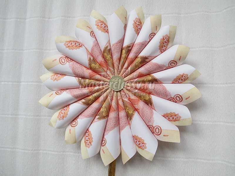 Денежные цветы