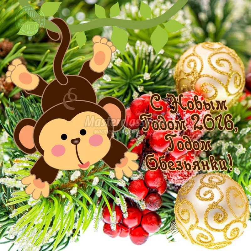 Прикольные поздравления с новым 2012 годом племяннику