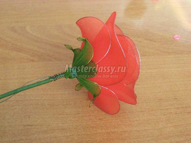 розы из капрона фото