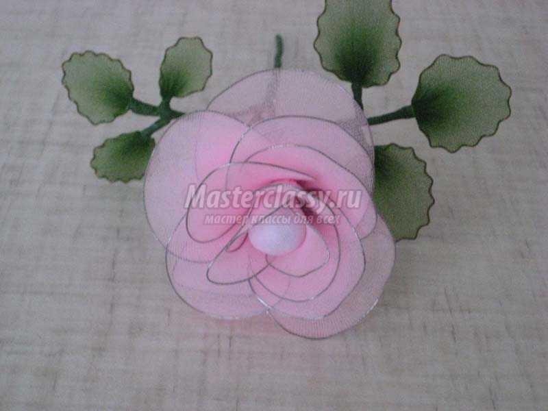 Розы из капрона своими руками мастер класс фото 64