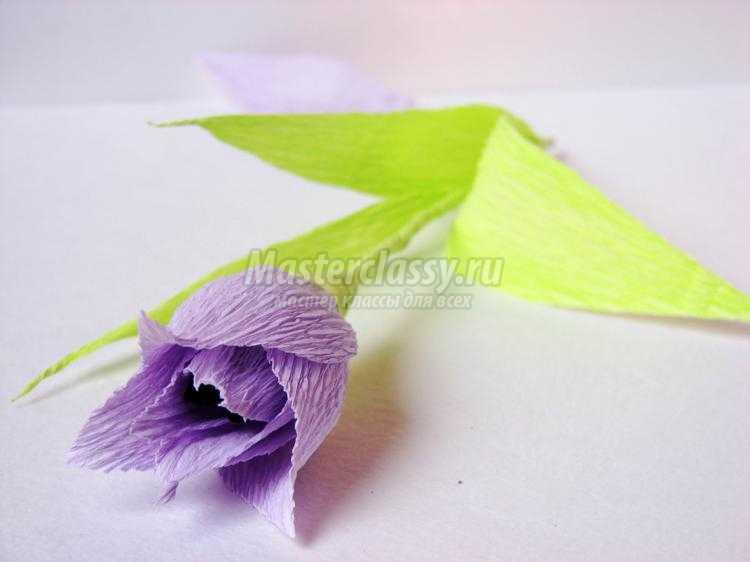 Цветы из гофрированной бумаги для тоПресс для