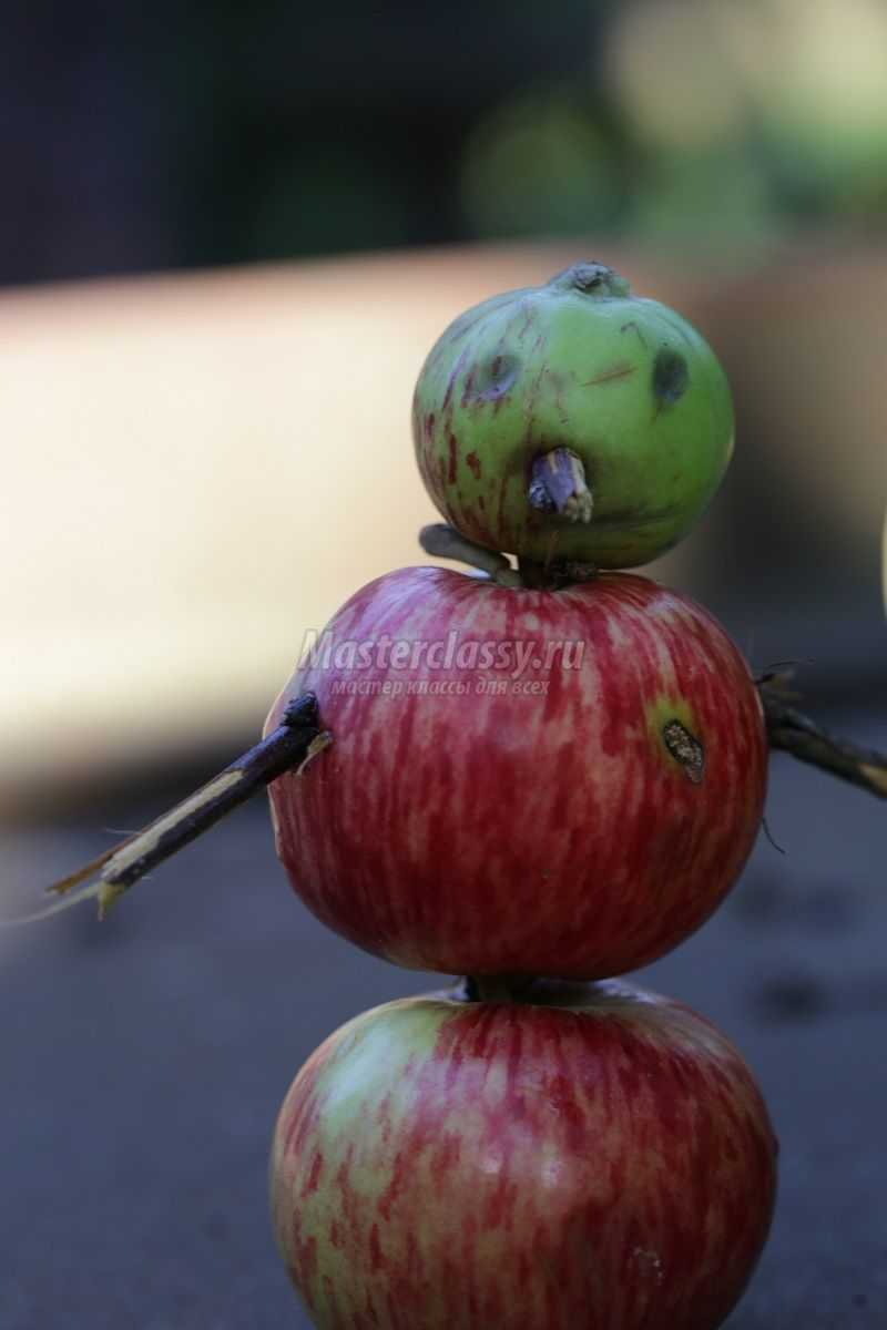 Поделка из свежего яблока 465