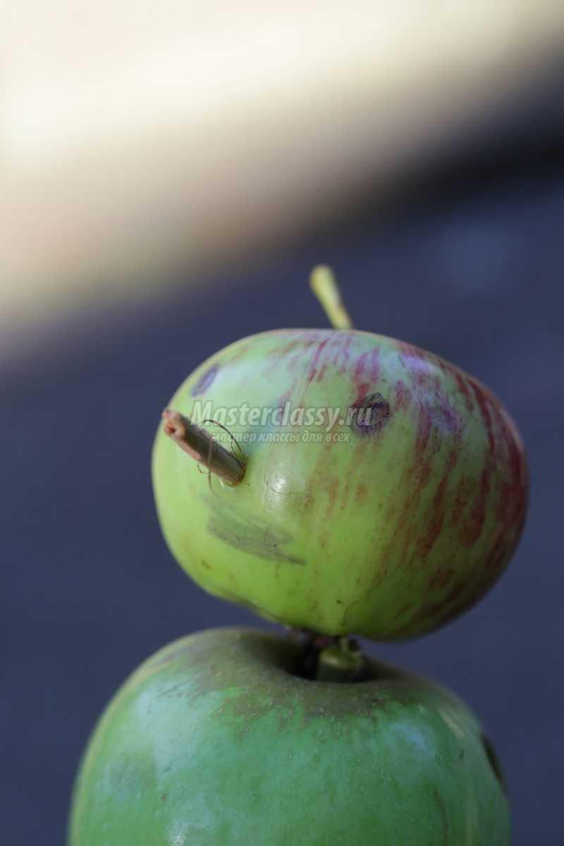 Поделка из свежего яблока 382