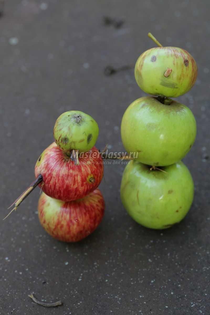 Поделка из свежего яблока