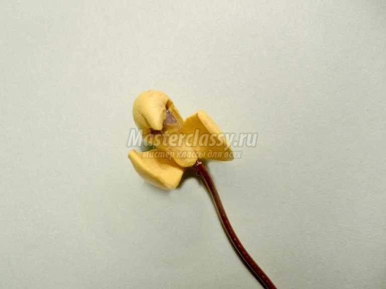 орхидеи из фоамирана мастер класс фото