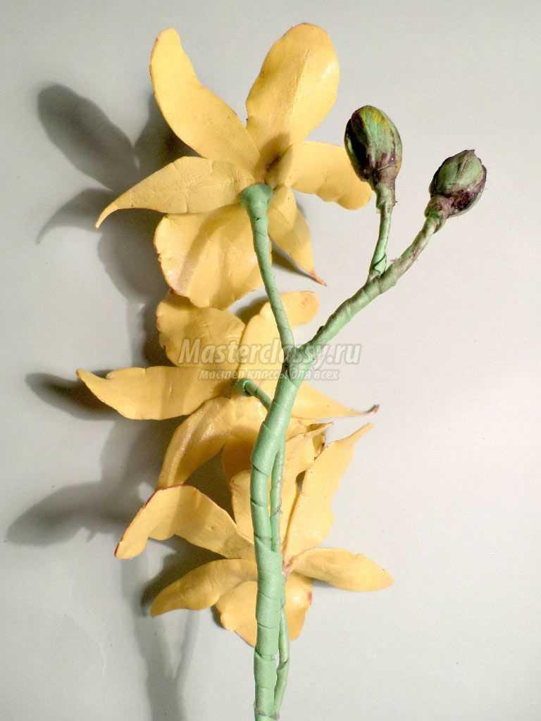 как сделать орхидею из фоамирана