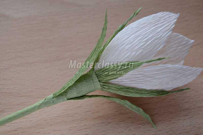 Цветы из конфет. Нарцисс с конфетой из гофрированной бумаги. Пошаговый мастер-класс с фото