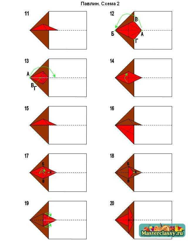 Павлин схема 2