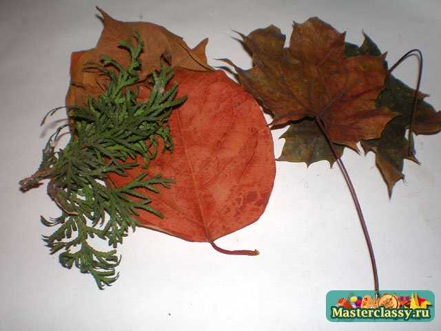 Поделки из листьев. Веточка осени