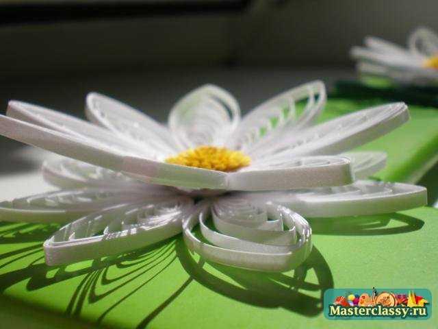 Квиллинг. Фоторамка Белые цветы. Мастер класс с пошаговыми фото