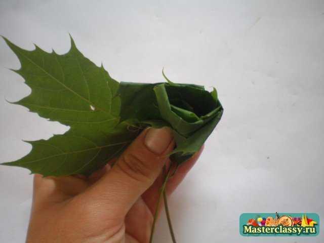 Букеты из кленовых листьев.Мастер класс с пошаговыми фото